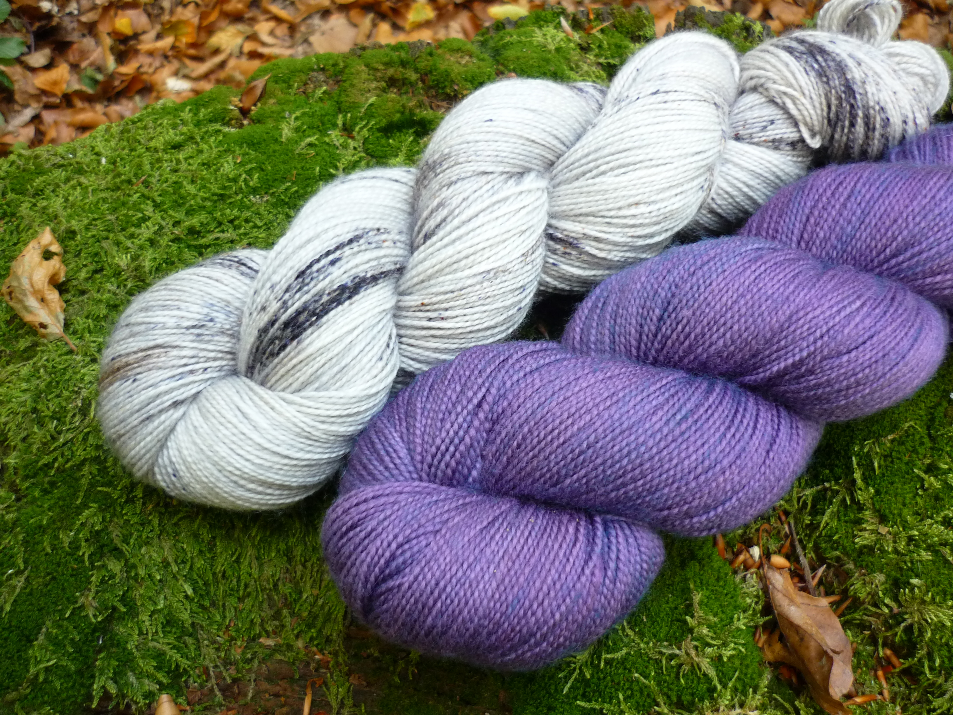 kit-sedum-violette-sucree